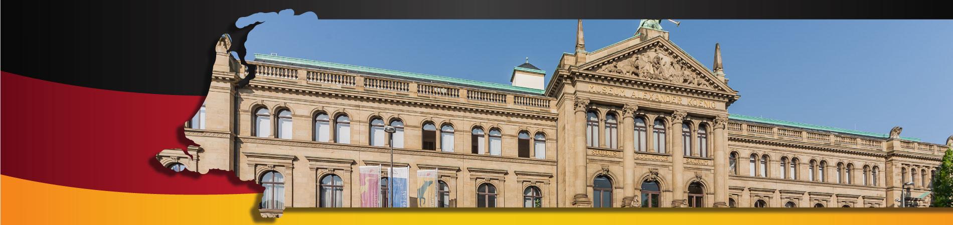 AMS Bonn Museum koenig