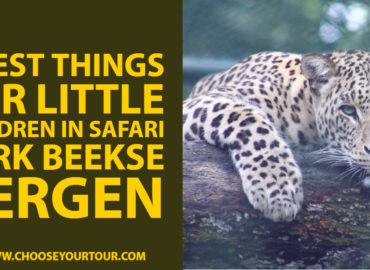 7 Best Things for Little Children in Safari Park Beekse Bergen