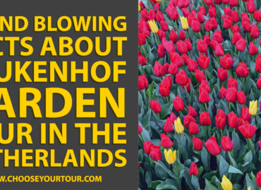 5 Mind Blowing Facts About Keukenhof Garden Tour in the Netherlands
